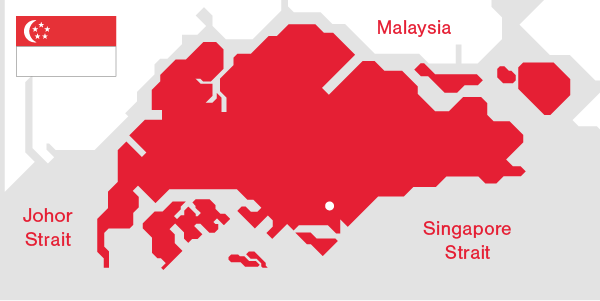 Illustration Singapore's Demographics